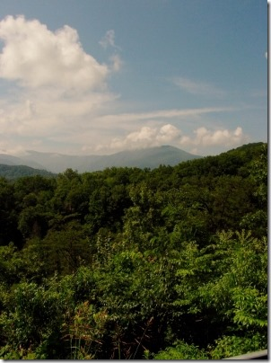 The view from my trip to Great Smoky Mountains National Park